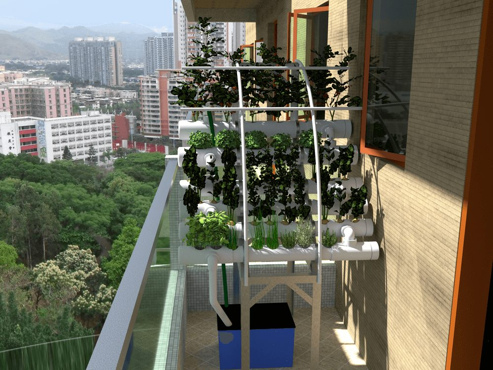 hydroponic system hong kong